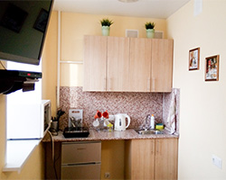 Furnished room in an apartment in the Zheleznodorozhny district, Ispanskikh rabochikh Str, 35.